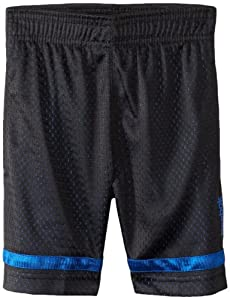Reebok Boys 2-7 Open Hole Mesh Short, Trust Blue, X-Large