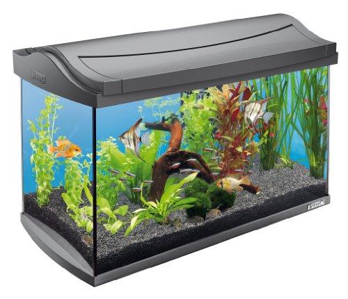 Tetra 151543 AquaArt Aquarium-Komplett-Set 60 L, modernes Design in Verbindung mit innovativer Technik und einfacher Pflege