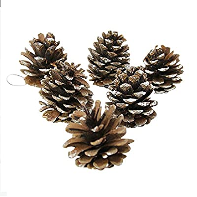 Set of 9 Dusted Snow Pinecones For All Christmas Projects