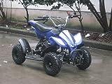 49cc 50cc Mini Moto Quad (quadard) 2 stroke air cooled off road dirt bike (Blue)