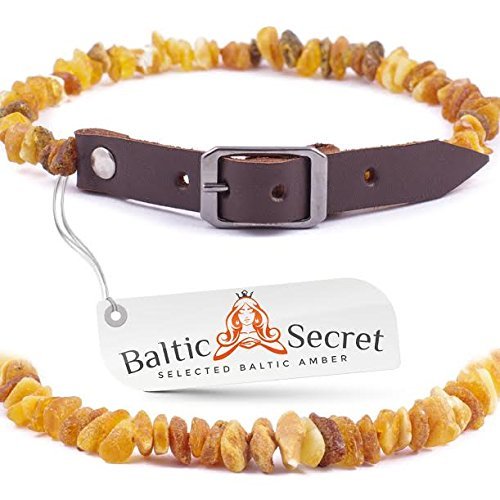baltic-secret-amber-collar-for-small-dogs-and-cats-natural-flea-and-tick-control-authentic-baltic-am