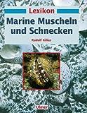 Image de Lexikon Marine. Muscheln und Schnecken