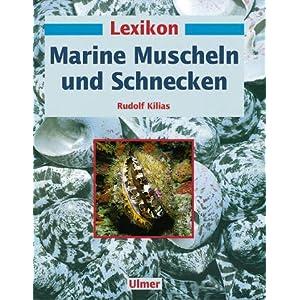 Lexikon Marine. Muscheln und Schnecken
