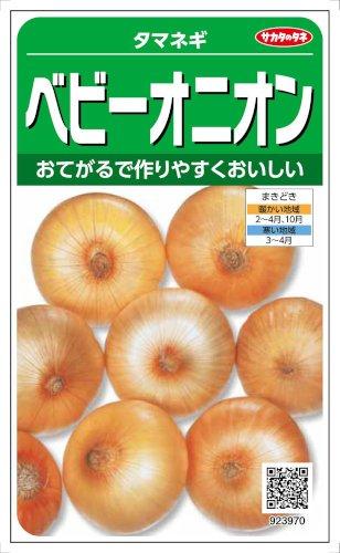 【種子】たまねぎ ベビーオニオン 3.5ml