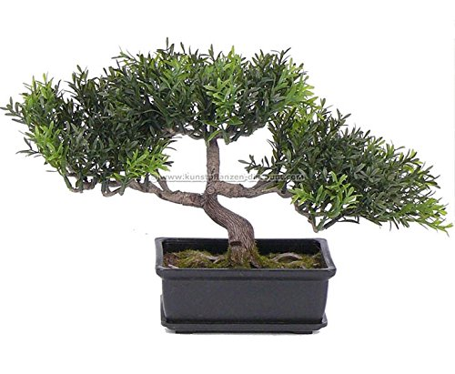 Teeblat-Bonsai-Kunstpflanze-in-Schale-mit-98-Blattzweigen-Hhe-23cm-knstliche-Bonsai-Pflanzen-Kunstpflanzen-Dekopflanzen-asiatische-Dekoration-Thai-Deko-China-Dekorationen-p-groes-Kunstpflanzen-Sortime