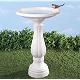 Miles Kimball Birdbath with Planter (Color: 840853128410, Tamaño: One Size Fits All)