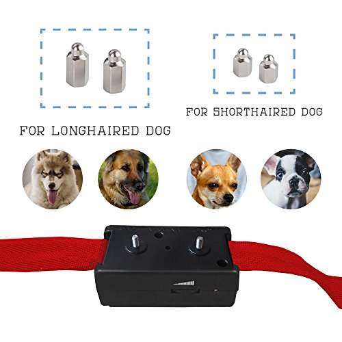 Bark Collar 1 Tbi 2016 Best Waterproof Dog Electronic