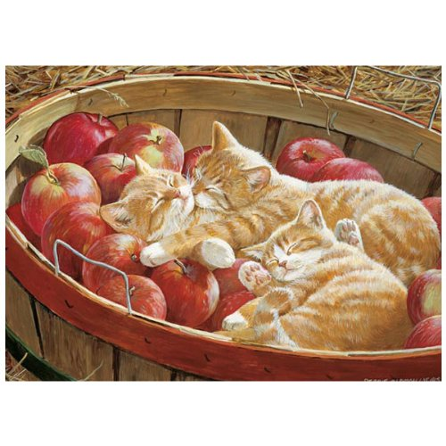 Cheap Outset Media Cobble Hill Apples and Oranges Jigsaw Puzzle (500 Pieces) (B004VSTCVU)