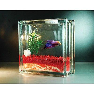 Betta plant vase vases sale for Betta fish tanks for sale
