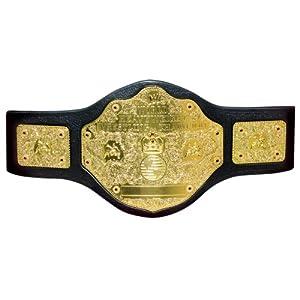SmackDown Čempiono titulai 51GLL3UZ8zL._SL500_AA300_