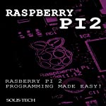 Raspberry Pi 2 Programming Made Easy |  Solis Tech
