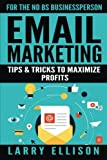 Email Marketing: Tips and Tricks to Maximize Profits (Volume 2)