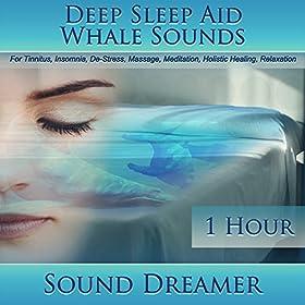 Tinnitus healing sounds intensive