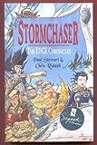Stormchaser: The Edge Chronicles (The Edge Chronicles, Volume 2)