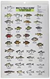 Freshwater Fish of North America (Mac's Guides) (0898862175) by MacGowan, Craig