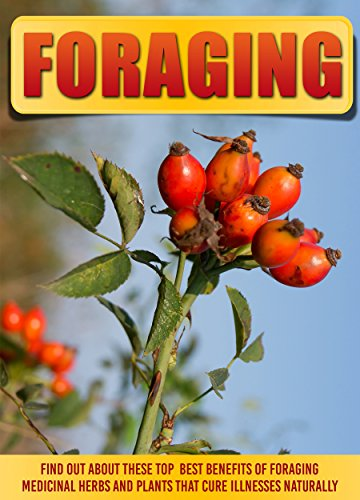 Foraging: Find Out About These Top Best Benefits Of Foraging Medicinal Herbs And Plants That Cure Illnesses Naturally PDF