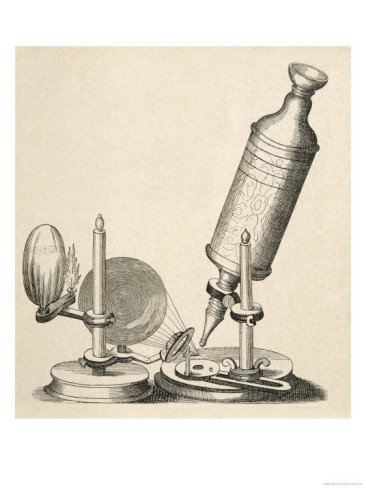 Robert Hooke'S Microscope Giclee Print Art (18 X 24 In)