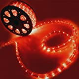 Flexible 50' LED Crystal Clear PVC Tubing Rope Light Indoor/Outdoor Boat Decorative Party Christmas Holiday Business Restaurant Light Kit 110V/60Hz Customizable Length (Red)