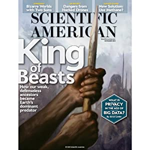 Scientific American, November 2013 Periodical