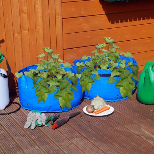 Pack Of 2 Vegetable Planter Grow Bag