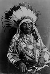 Chief Red Cloud, ca. 1915 Photograph - Beautiful 16x20-inch Photographic Print from the Library of Congress Collection