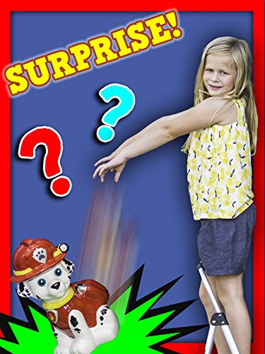 Assistant Piggy Bank Smash Surprise With Paw Patrol and Disney Frozen