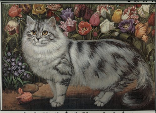 Country Cats Collection - Tulip Cat - 1000 Piece Puzzle & fix Puzzle Glue by F-INK - 1