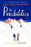 img - for The Possibilities: A Novel book / textbook / text book