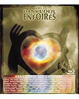 Dans L'Oeil Des Enfoirés 2011 [Blu-ray]