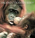 Orangutan Odyssey