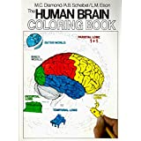 The Human Brain Coloring Book (Coloring Concepts)