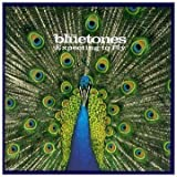 Expecting to Fly - The Bluetones