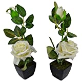 Thefancymart Set Of 2 Piece Artifical Rose Plants With Pots Style Code -9