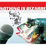 Nothing Is Bizarre - Skurrile Musikalische Raritäten