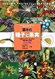 草木の種子と果実 (ネイチャーウォッチングガイドブック)