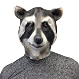 Cool Raccoon Mask - Off the Wall Toys