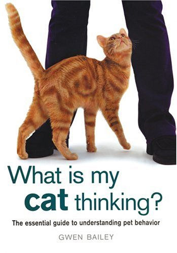 What Is My Cat Thinking? : The Essential Guide to Understanding Pet Behavior, GWEN BAILEY