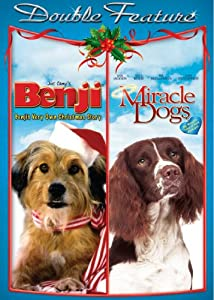 Benjis Very Own Christmas Storymiracle Dogs from LIVING ARTS