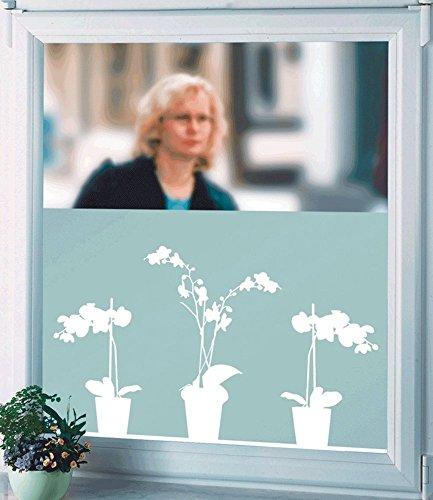 sichtschutzfolie orchidee 1 st ck. Black Bedroom Furniture Sets. Home Design Ideas