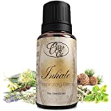Inhale Respiratory Blend By Ovvio Oils - Promotes Seasonal Allergy, Sinus & Congestion Relief for Natural Breathe the Holistic Way - 100% Pure Aromatherapy Grade Essetnail Oils - Origin: France, Spain - (Comparable to Doterra Breathe, Young Living, Healing Solutions, Sun Organic, Eden's Garden) Except Imported Directly From Europe and 100% Authentic - 15ml