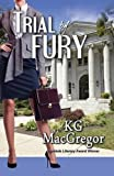 img - for Trial by Fury book / textbook / text book
