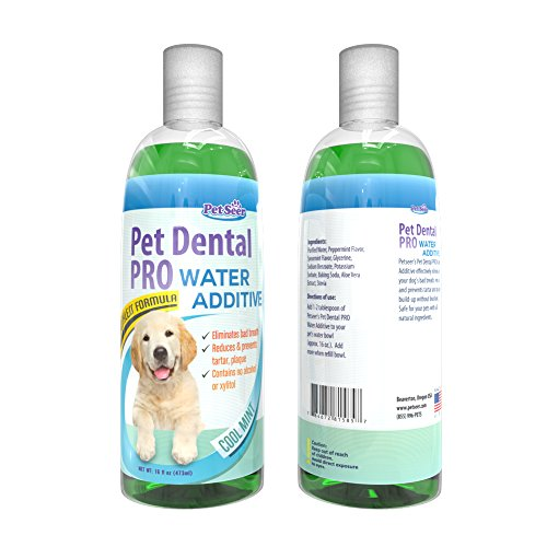 Pet water additive for dogs and cats no dog toothbrush for Dog dental water additive