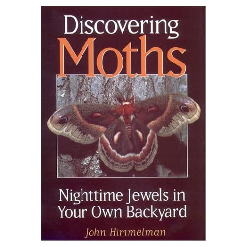 Discovering Moths by John Himmelman