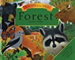 Sounds of the Wild: Forest