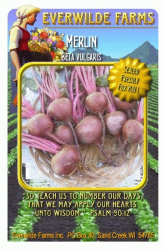 Everwilde Farms - Merlin Beet Seeds - Jumbo Seed Packet (500)