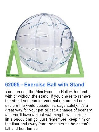 Habitrail Mini Exercise Ball With Stand – Habitrail 62065
