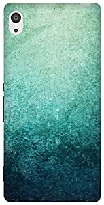 The Racoon Lean Blue Grunge hard plastic printed back case/cover for Sony Xperia Z2