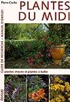 Plantes du Midi : Tome 2 : Plantes vi...
