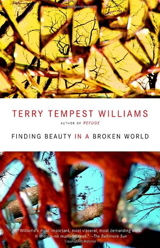 Finding Beauty In A Broken World front-941723