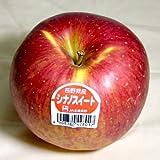 長野産 信州リンゴ シナノスイート 5kg 中玉18~20個入り